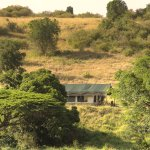 One of 8 Kicheche Mara camp tents