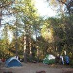 Foto de Yosemite Pines RV Resort and Family Lodging