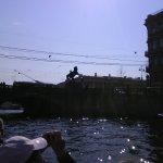 Foto di Anichkov Bridge