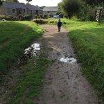 Chark Farm Foto