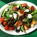 Spring salad with sauteed scallops. A healthy and delicious option.
