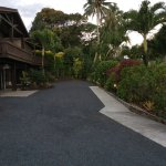 Driveway in front of villa. Gorgeous landscaping!
