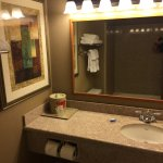 Foto de BEST WESTERN PLUS Coon Rapids North Metro Hotel