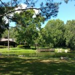 The Campsites at Disney's Fort Wilderness Resort Image