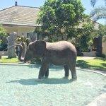 Hidden Valley Resorts Bali Foto