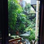 IMG_20160914_141907_large.jpg