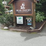 Photo of Bear Tracks Whistler Chalet