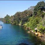 Photo de Cremorne Point to Mosman Bay Walk
