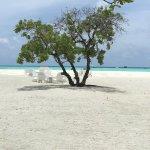 Espace de paix sur la plage