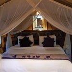 Sarova Mara Game Camp Aufnahme