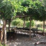 Agriturismo Valleponci and Restaurant Foto