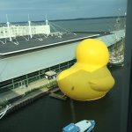 view from the end of the hall of the World's Largest Rubber Duck!