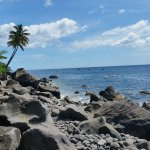 Plage de galet côte Caraïbe Nord