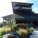 Foto de Atlantic City Aquarium Historic Gardner's Basin