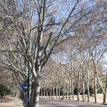 Foto de Parque General San Martín