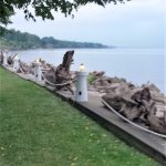 Hedges front lawn on the shore of Lake Ontario