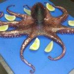 fresh octopus at mediterraneo cucina siciliana