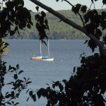 Foto de Hunter Cove Cabins on Rangeley Lake