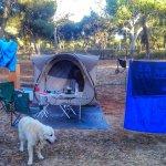 Nuestro chalet en el Camping Giralda. Nico nuestro guardián.