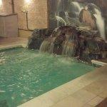 Foto de Hilton Chicago/Indian Lakes Resort
