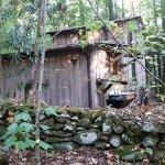 Garden of Eden Cabins Foto