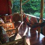 Cashew Hill Jungle Cottages Foto