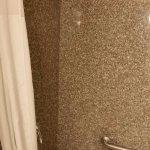 Quality Inn & Suites Near Fairgrounds Ybor City Foto