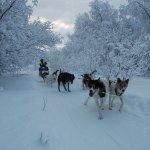 Kirkenes Snowhotel Foto