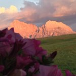 Hotel Santner Alpine Sport & Relax Foto