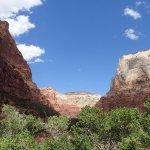 Photo of Kayenta Trail
