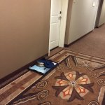 Used room service tray sat on floor for 2 days