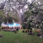 Bakubung Bush Lodge Foto