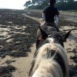 Foto de Anglesey Riding Centre
