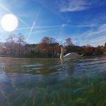 Foto tirada pelo meu esposo no lago de Annecy. Parece pintura!