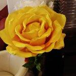 20160917_173950_large.jpg
