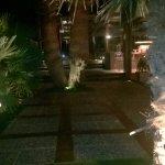Palace Hotel Bomo Club Foto