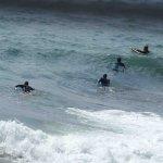 Les surfeurs de Cassis....