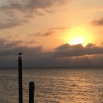 Foto di Barrier Island Station - Duck