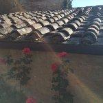 Agriturismo Podere San Lorenzo Foto