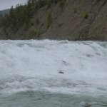 Photo of Bow Falls