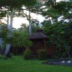 petit carbet détente dans le jardin créole