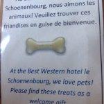 Dans cet hotel on aime les animaux.