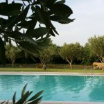 Agriturismo Sant'Elia Foto