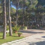 Photo de Hotel Mare Pineta