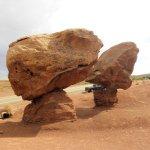 Funghi fossili