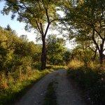 On the hill (15 min walking)