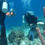 Photo de Scuba Lodge Dive Center Pietermaai
