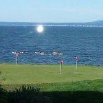 Morning kayakers