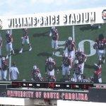Williams-Brice Stadium Photo