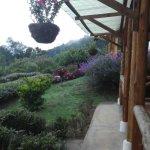 Photo de Hotel de Montana y Restaurante Suria